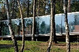 glass-pavilion-mirroring-secular-pine-tree-forest-1